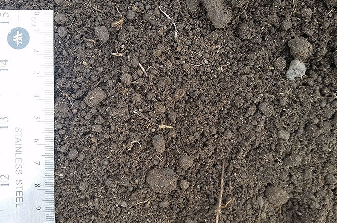 Screened-Topsoil