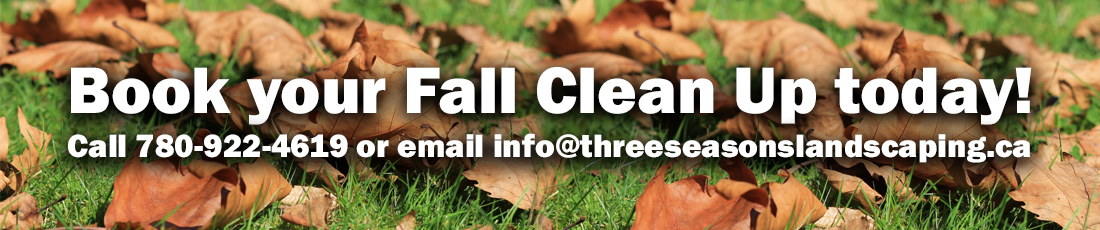 Fall Clean up web banner