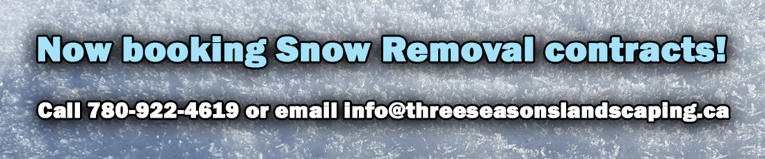 SnowRemoval banner