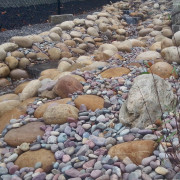 Creek of Athabasca Stone Montana Rainbow
